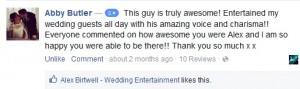Excellent Wedding Singer Review The Villa